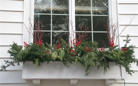 winter window box the impatient gardener winter containers a bit of much