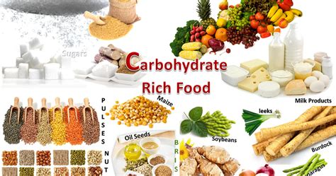 top 5 carbohydrates supplements top building foods top carbohydrate foods all