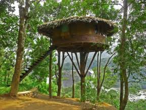 tree houses beautiful tree houses prime home design beautiful tree