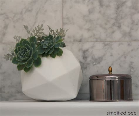 succulents in bathroom giveaways archives simplified bee