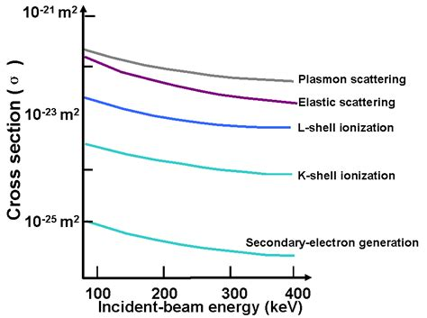 cross section of elastic scattering of electrons