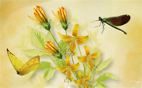 hd tiger lilies dragonfly butterfly wallpaper