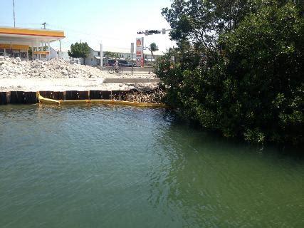 west marine roosevelt blvd conserving the mangroves