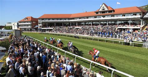 chester racecourse involved in new project to boost visitor economy chester chronicle