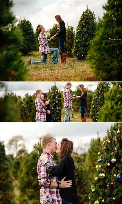 surprise proposal at country cove christmas tree farm