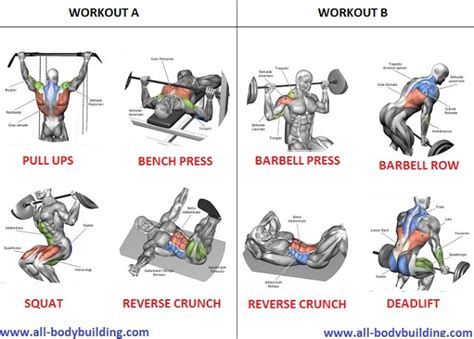 Incline Bench Crunch Looking For A Beginner Muscle Building Workout Routine