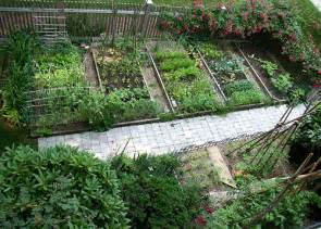 amazing vegetable gardens living earth s articles