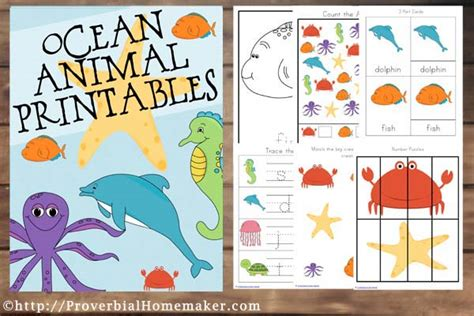ocean animals matching cards 171 preschool and homeschool ocean animal printables subscriber freebie proverbial