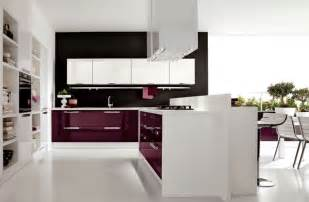 purple kitchen designs small purple kitchen ideas 7149 baytownkitchen