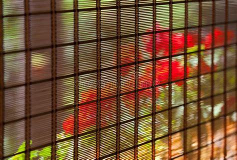 vorhänge japanisch bambus vorh 228 nge lizenzfreie stockfotos bild 25898018