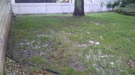 how to fix a wet backyard solving common landscape drainage problems water hoop
