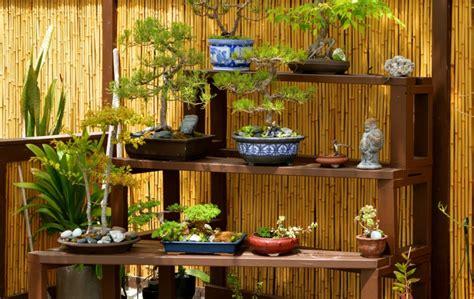 bonsai haus gartengestaltung mit bonsai gartenkunst im japanischen stil