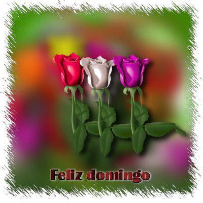 imagenes de rosas feliz domingo gifs bonitas de domingo gifs de amor