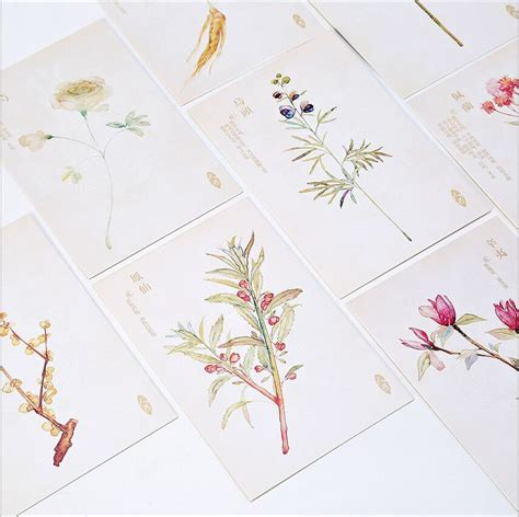 Swatch Gift Card - aliexpress com buy 30pcs pack retro hand drawing season flower plants swatch