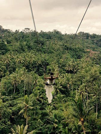 swing bali bali swing ubud all you need to know before you go