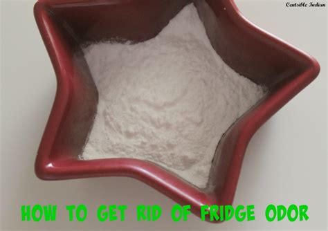 how to get rid of bad odor in house how to get rid of bad smell in fridge centsible indian