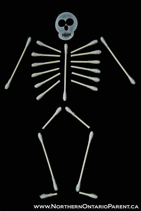 q tip skeleton craft template cotton swab skeleton a great craft for