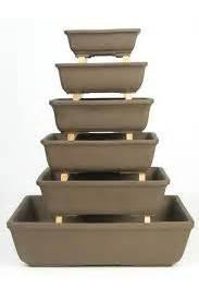 vasi da bonsai palla di mele vasi da bonsai