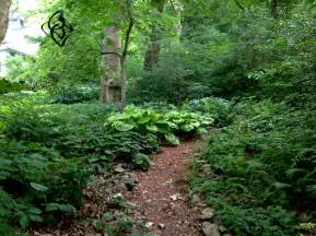 Closer view of the woodland garden it peaks in early spring but
