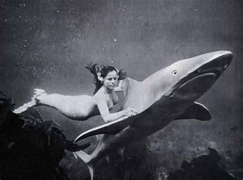 deep web imagenes horribles mermaid diane webber children of the night
