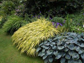 giardino in ombra ombra in giardino verde e paesaggio