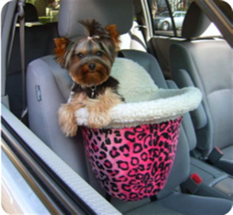 yorkie car seat 1000 images about pets on treats puppys and yorkie