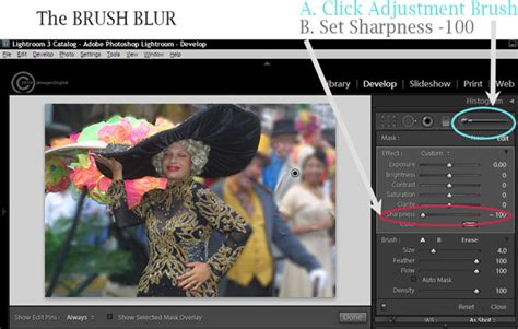 how to blur background in lightroom blur the background in lightroom an easier method