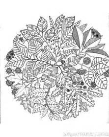 dibujos colorear mayores bubali