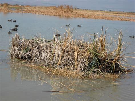 curtain blind duck hunting duck blinds duck buddies duck blinds fiberglass blind