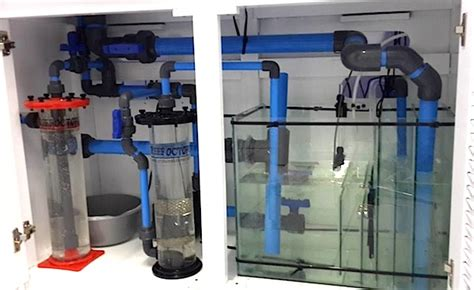 Saltwater Aquarium Plumbing Design by Blue Pipe Is The Norm For South Aquariums