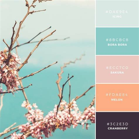 canva color palette build your brand 20 unique and memorable color palettes