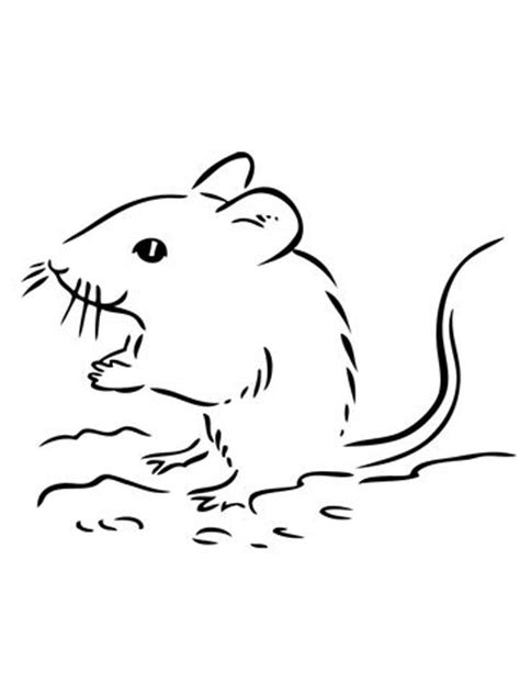 deer mouse coloring page 17 best images about muizenissen on pinterest cartoon