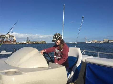 bay boat rental galveston dolphins in galveston bay picture of caribbean breeze