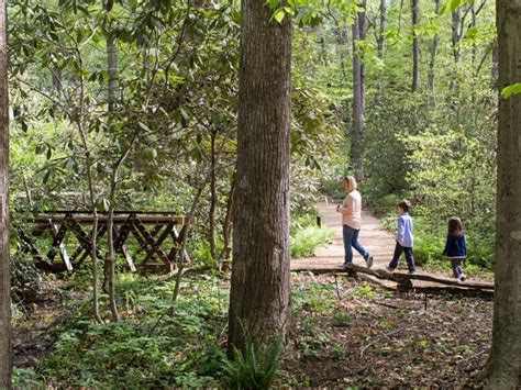 Sc Botanical Garden A Walk Across South Carolina Www Scliving Coop