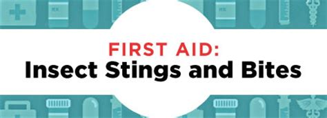 First Aid Insect Stings And Bites