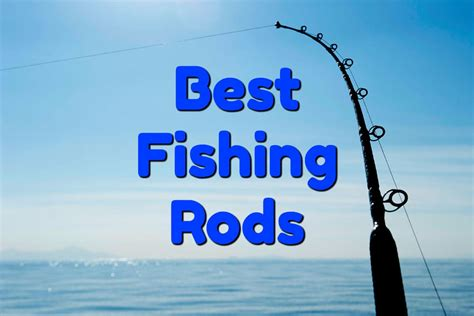 best fishing rods for the money in 2018 outdoor tricks