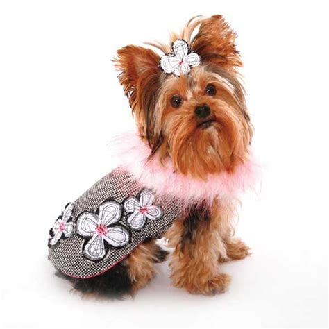 cheap yorkie clothes and accessories 1000 ideas about designer clothes on clothes boutique