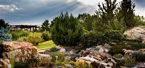 Rock Garden Fort Collins A Colorado Botanic Garden List