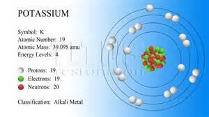 Protons In Potassium Potassium Atom Model