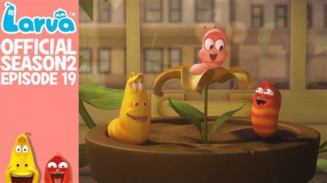 film larva episode baru official hello pink larva season 2 episode 19 youtube