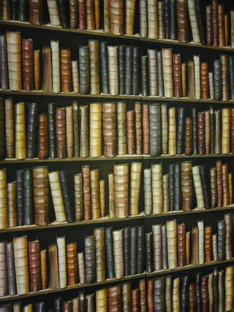 Bookshelves Wallpaper Hotel Chic Library Wallpaper At The Pig Hotel In