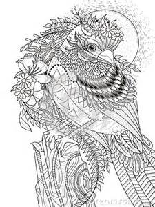 tropical butterfly coloring pages gallery