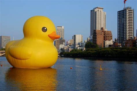 rubber st sydney rubber duck in harbour sydney festival