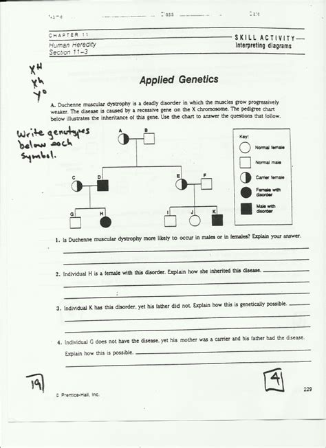 section 14 1 human heredity answers chapter lessons homework assignments kempf biology