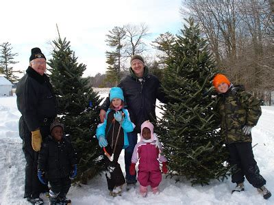 cut down christmas tree in utah the basten family adoption