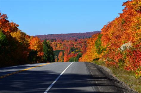fall colors in algonquin park 2014