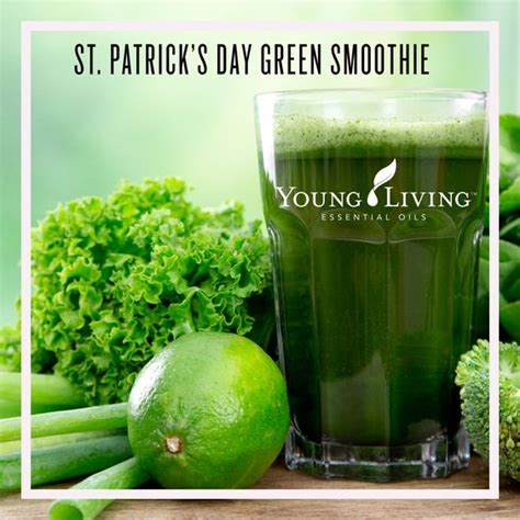 Living Clay Detox Directions Green Smoothie by 5 Healthy Green Smoothie Recipes S Day