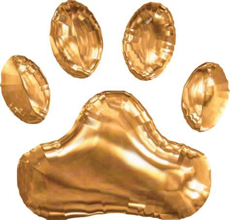 golden retriever puppies athens ga akc golden retriever puppies for sale