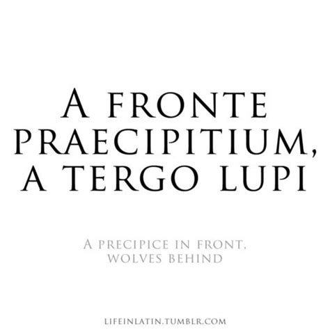 latin tattoo translation from english 57 best images about latin quotes on pinterest 83 tes