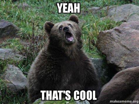 Thats Cool Meme - yeah that s cool sarcastic bear make a meme